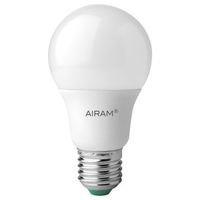 AIRAM Airam Frost LED E27 5,5 W 2800 K