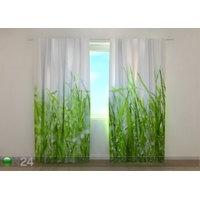 Puolipimentävä verho Fresh Green Grass 240x220 cm, Wellmira