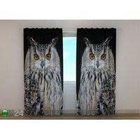 Puolipimentävä verho Attentive Owl, Wellmira