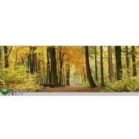 Keittiön työtason tausta Autumn Forest 180x60 cm, ED