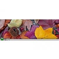 Keittiön työtason tausta Autumn Leaves 260x60 cm, ED