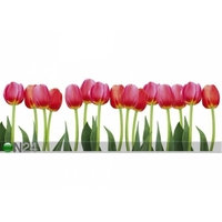 Keittiön työtason tausta Bed of Tulips 350x60 cm, ED