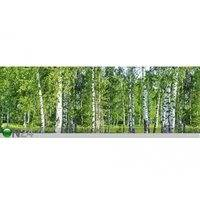 Keittiön työtason tausta Birch Grow 180x60 cm, ED