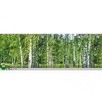 Keittiön työtason tausta Birch Grow 260x60 cm, ED