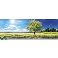 Keittiön työtason tausta Blossom Tree 260x60 cm, ED