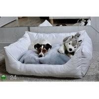 Koiranpeti S1 45x35 cm