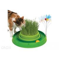Kehittävä lelu kissoille, Hagen