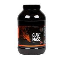 Giant Mass, 4 kg