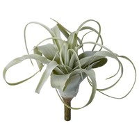 Flora Aloe H19 cm, Lene Bjerre