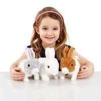 Happy Pets Teeny Weeny Bunny 3 asst- Aktiv Kanin, Happy Friend