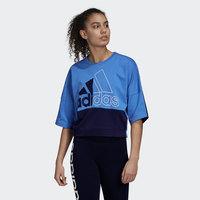 Must Haves Colorblock Sweatshirt