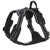 Koiran valjaat FA Training, musta (XS), Feel Active