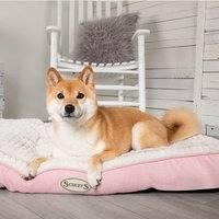 Koiran patja Scruffs Ellen, pinkki L